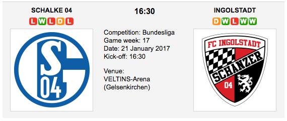Schalke 04 vs FC Ingolstadt 04 - Bundesliga: Preview and Tips