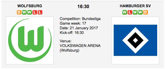 VfL Wolfsburg vs Hamburg SV - Bundesliga: Preview and Tips